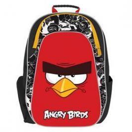 P + P Karton anatomický Angry Birds