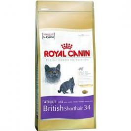 Royal Canin British Shorthair10 kg