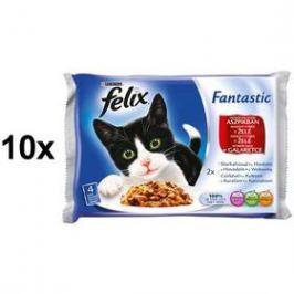 Felix Fantastic masový výběr s hovězím a kuřetem v želé 10 x (4 x 100g)