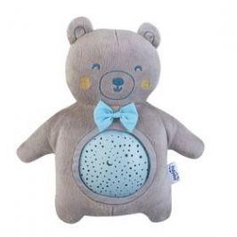 Pabobo Musical STAR TEDDY BOY