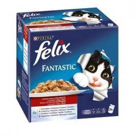 Felix Fantastic masový výběr 24 x 100 g