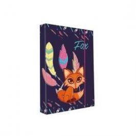 P + P Karton A4 Fox