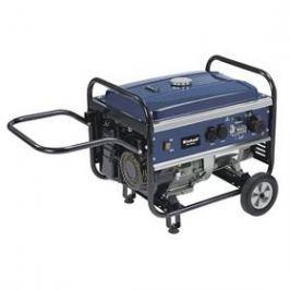 Einhell BT-PG 5500/2 D Blue