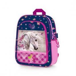 P + P Karton Horse/Kůň předškolní