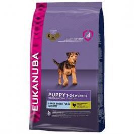 Eukanuba Puppy & Junior Large Breed 15 kg