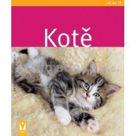 KNIHA Kotě - Kotě