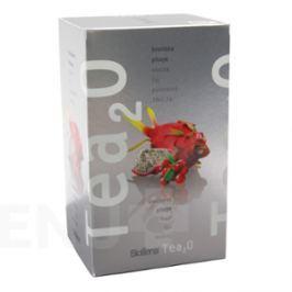 Čaj Tea2O Brusinka + Pitaya n.s. 20x2.5g Biogena
